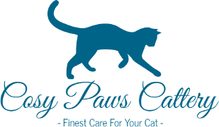 Cosy Paws Cattery Berkshire – Serving Berkshire, Wiltshire, Hampshire and Oxfordshire – Luxury Cattery